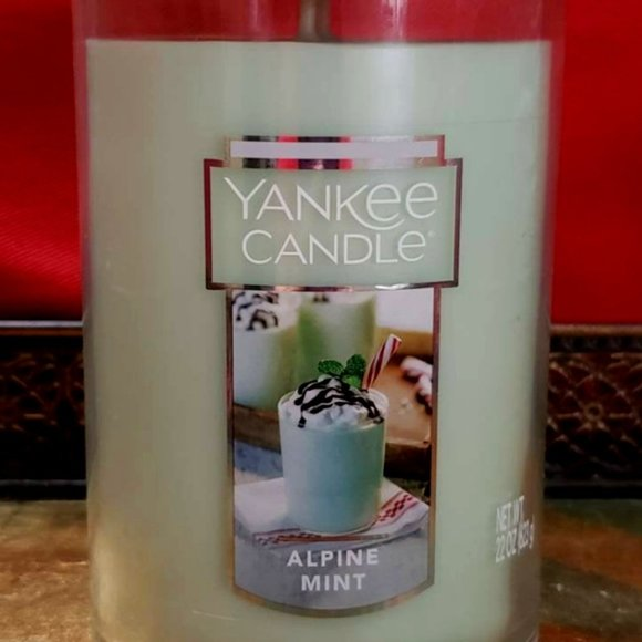 *RARE* Yankee Candle Alpine Mint 2 wick Candle